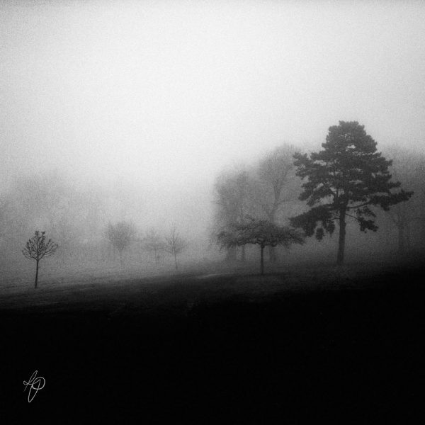 Alone On A Hill. Black and white photographic prints, Richard Pengelley, The Shy Photographer
