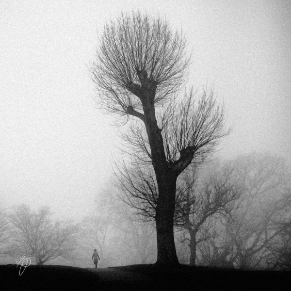 Hill Guardian. Black and white photographic prints, Richard Pengelley, The Shy Photographer