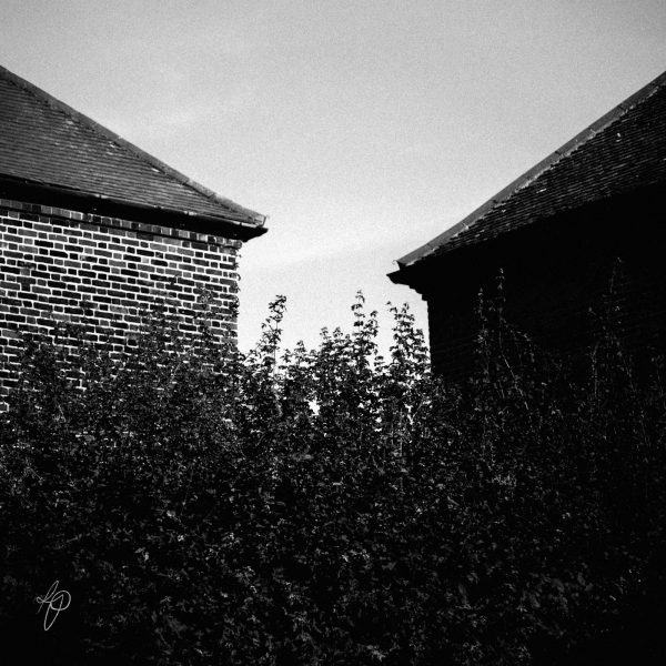 Neighbours. Black and white photographic prints, Richard Pengelley, The Shy Photographer